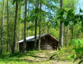 Old Tennessee Cabin